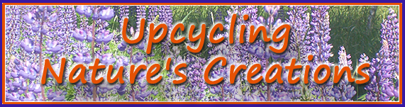 Upcycling Nature's Creations